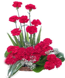 One Side Arrangement of 20 Red CarnationsFlowers Delivery in Jalahalli Bangalore