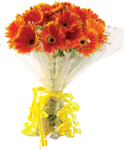 Bunch of 20 Orange Gerberasend-flower-Kamakshipalya