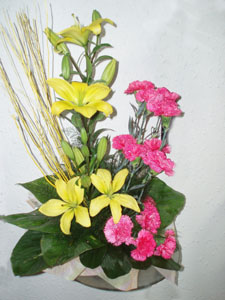 The sign of Joysend-flower-Visveswarapuram