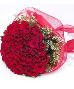 Bunch of 50 Red Roses Wrapped in Net Packingsend-flower-Kamakshipalya