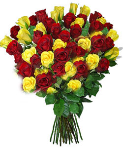 Bunch of 70 Red & Yellow Rose Bunch