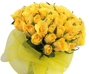 Bunch of 50 Yellow Roses in Net Packingsend-flower-Kamagondanahalli