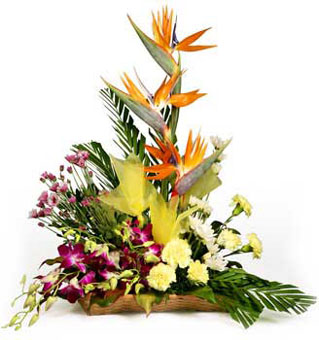 Arrangement of 15 Carnations & 10 Orchids & 5 BOP send-flower-avalahalli