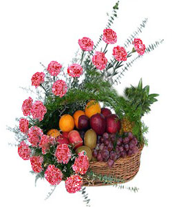 Arrangement of 20 Pink Carnations with 4 KG Mix Fruits.