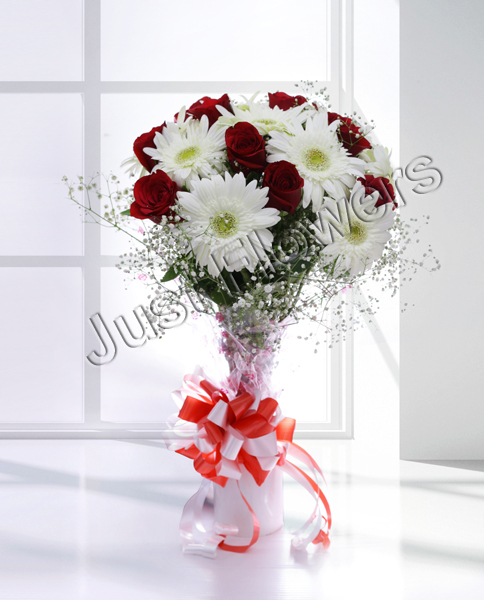 12 Red Roses & White Gerbera Bunch in Paper Packing
